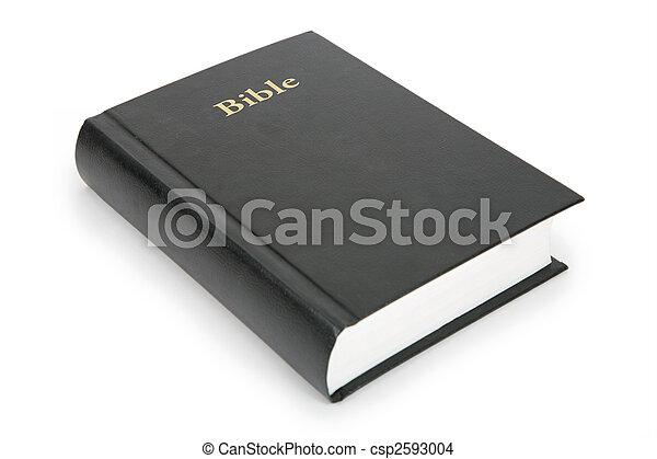 closed bible - csp2593004
