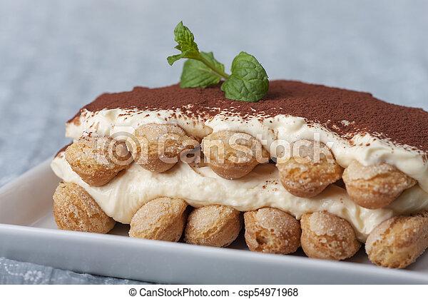 closeup of a tiramisu dessert - csp54971968