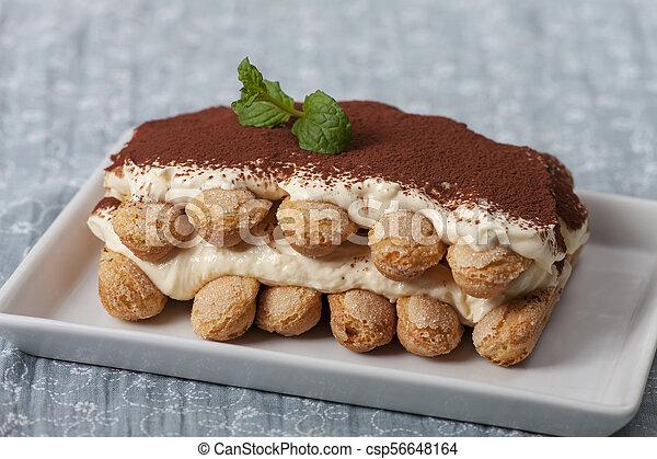 closeup of a tiramisu dessert - csp56648164