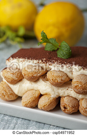 closeup of a tiramisu dessert - csp54971952