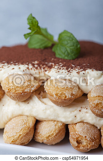 closeup of a tiramisu dessert - csp54971954