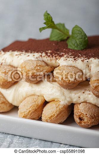 closeup of a tiramisu dessert - csp55891098