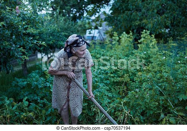 Closeup of an old woman in the garden - csp70537194