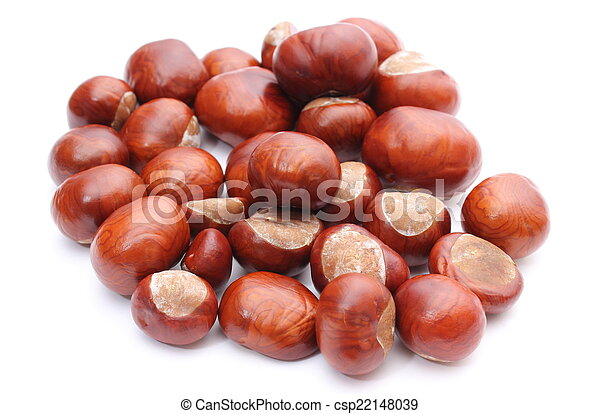 Closeup of chestnut on white background - csp22148039