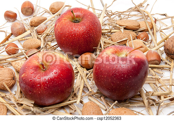 closeup of red apples with waterdrops and nuts isolated on white background - csp12052363
