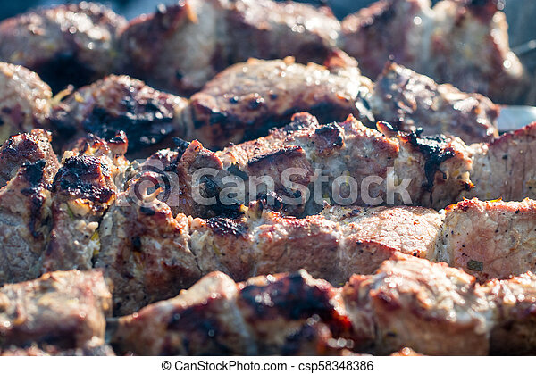 closeup of some meat skewers being grilled in a barbecue - csp58348386