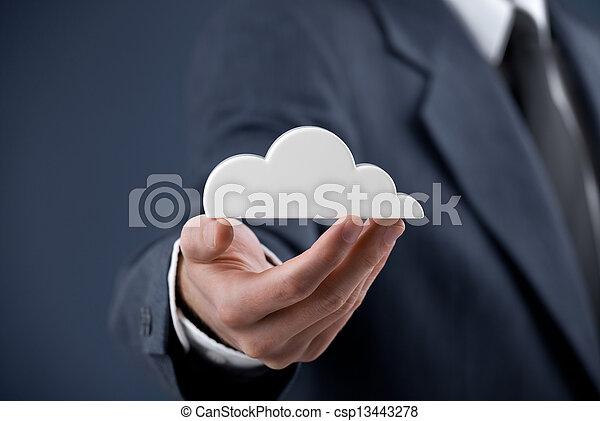Cloud computing - csp13443278