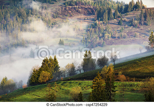 Clouds of fog on mountain hills. Misty sunny morning in forest - csp47254229