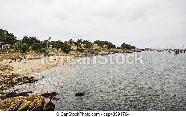 Cloudy Beach in Monterey - csp43391764