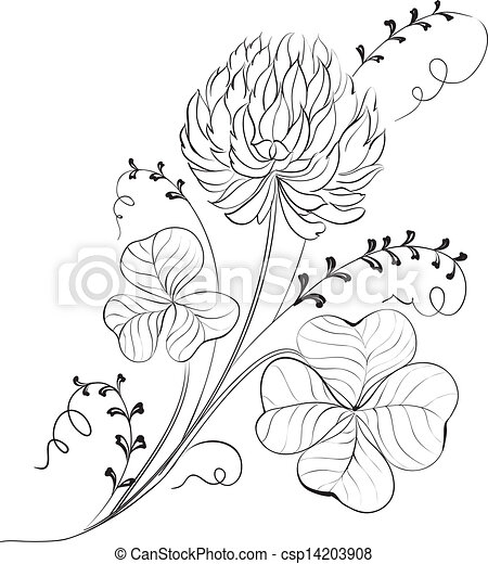 clover flowers isolated vector