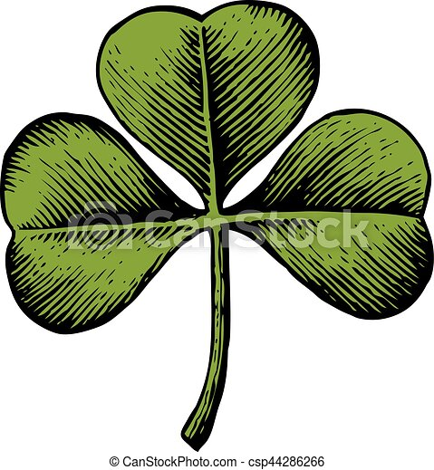 Clover with three leaf - vintage engraved vector illustration (hand drawn style) - csp44286266