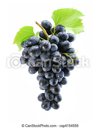cluster of blue grape isolated - csp4154559