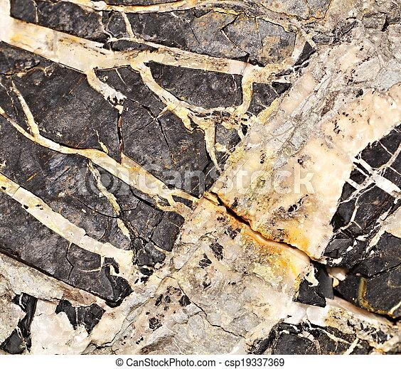 coal with quartz - csp19337369