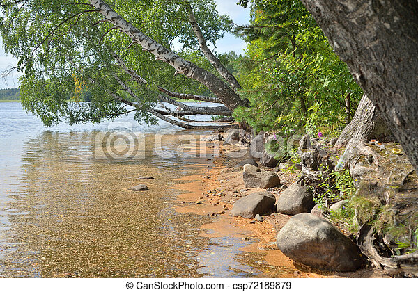Coast of lake. - csp72189879