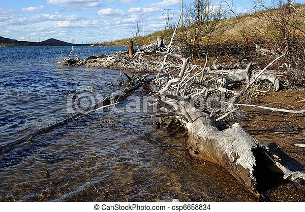 Coast of lake. - csp6658834