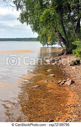 Coast of lake. - csp72189795