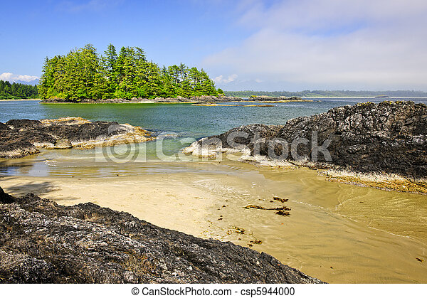 Coast of Pacific ocean, Vancouver Island, Canada - csp5944000