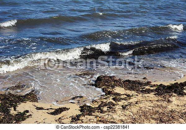 Coast of the Black Sea. - csp22381841