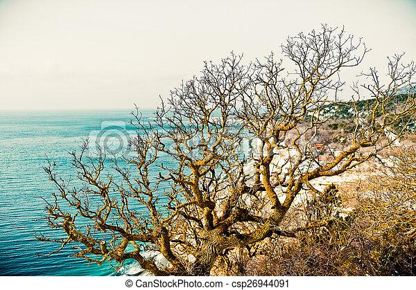 Coast of the Black Sea - csp26944091