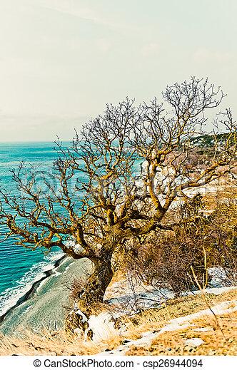 Coast of the Black Sea - csp26944094