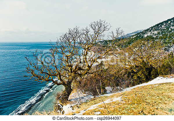 Coast of the Black Sea - csp26944097