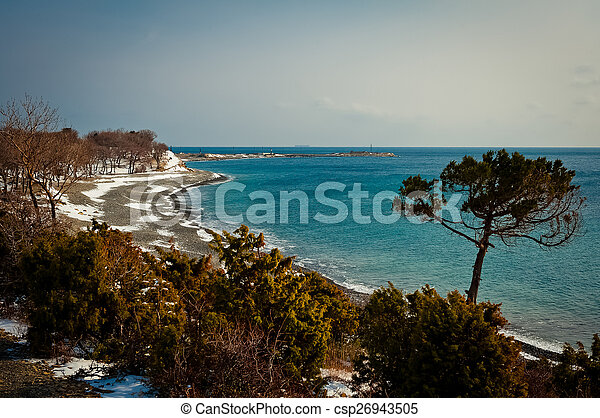 Coast of the Black Sea - csp26943505