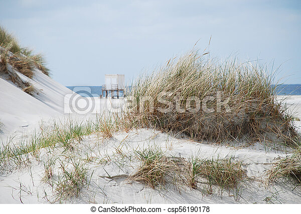 Coastal scene on Amrum, Germany - csp56190178
