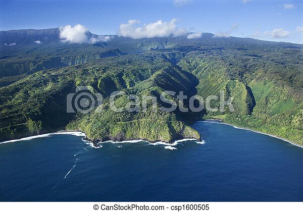 coastline., ハワイ - csp1600505