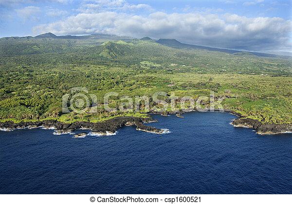coastline., hawaiian  - csp1600521