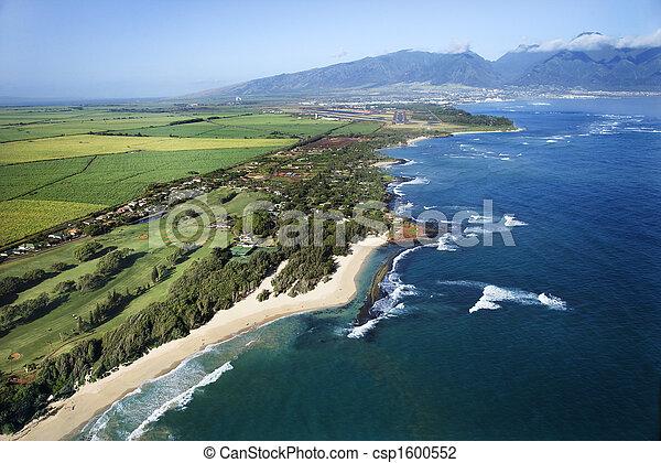 coastline., hawaiian  - csp1600552