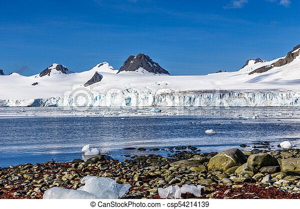 Coastline with stones and cold still waters of antarctic sea lagoon with drifting icebergs and snow mountains in the background, Half Moon island, Antarctica - csp54214139
