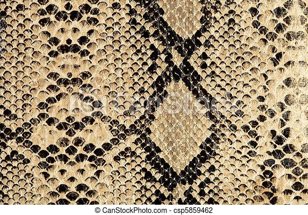 cobra, textura - csp5859462