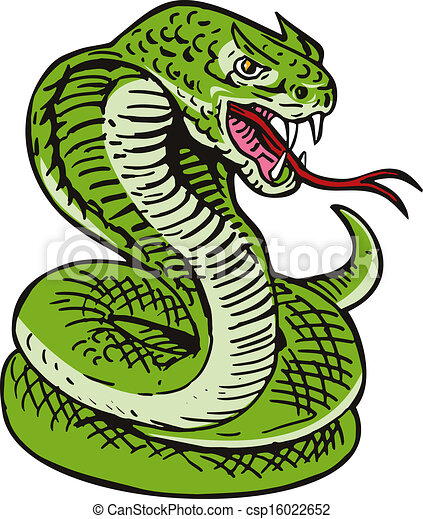 cobra viper snake illustration of a cobra viper snake serpent done rh canstockphoto com viper clipping viper clipart black and white