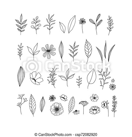 cobrança, mão, floral, fundo, ilustrações, desenhado, branca - csp72082920