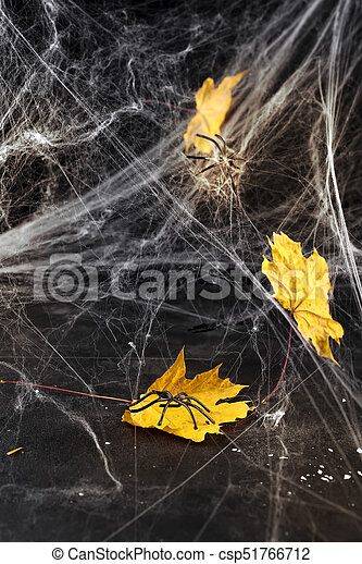 Cobweb or spider's web against a black background, - csp51766712