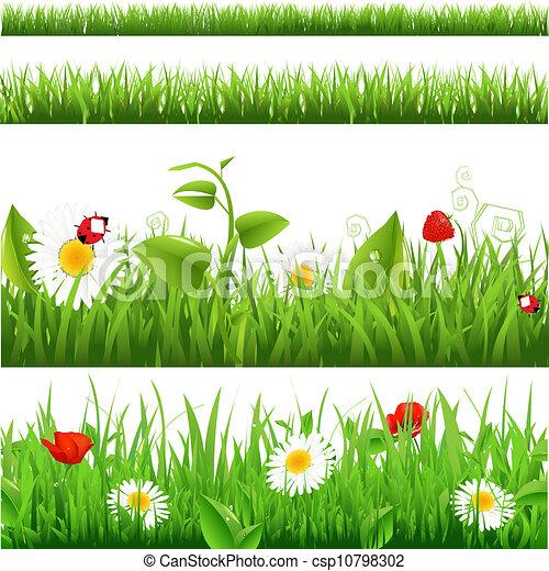 coccinelle, fleurs, ensemble, arrière-plans, herbe - csp10798302