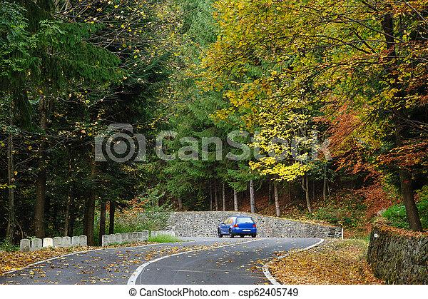 Coche en el bosque en la carretera Transfagarasan - csp62405749