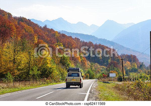 Coche en el bosque en la carretera Transfagarasan - csp62411569