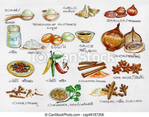 Cocina acuarela materias primas especias pintura - Aprovisionamiento de materias primas en cocina ...