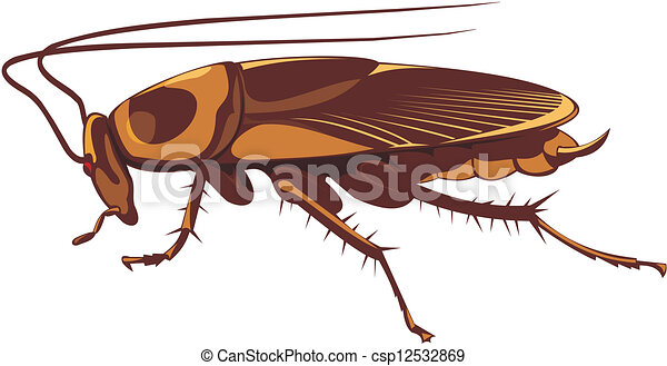 cockroach pest control household insect pest clip art vector rh canstockphoto com cockroach cartoon clipart hissing cockroach clipart