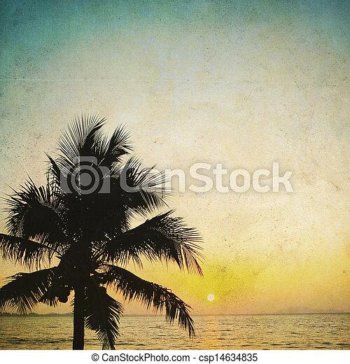 coco, mostrado silhueta, vindima, árvore, palma, fundo, amanhecer - csp14634835