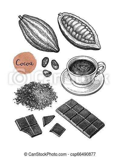 Cocoa and chocolate set. - csp66490877