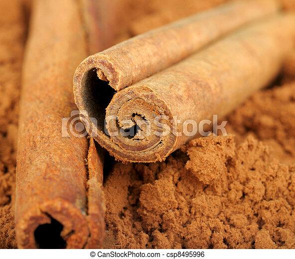 cocoa and cinnamon - csp8495996