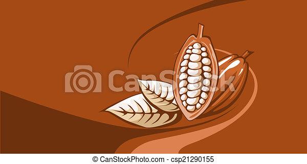 cocoa bean - csp21290155