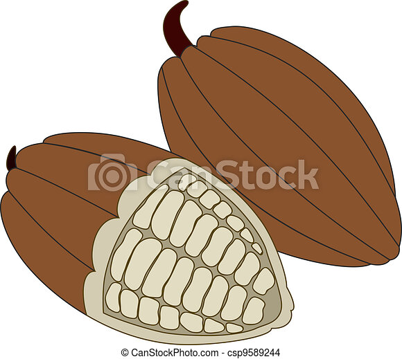 Cocoa beans - csp9589244