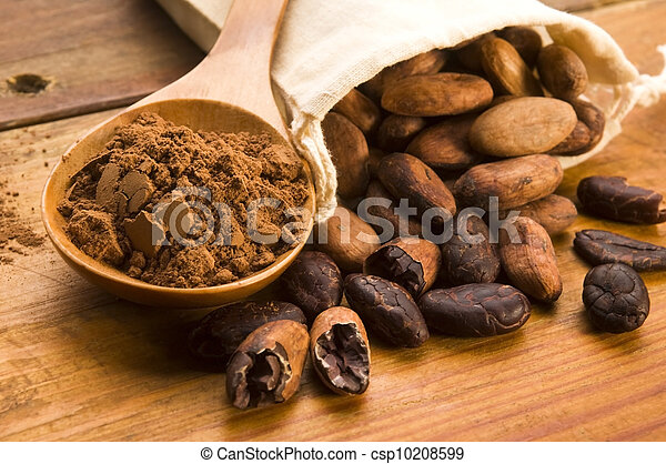 Cocoa (cacao) beans on natural wooden table - csp10208599