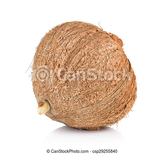 coconut closeup on a white background - csp29255840