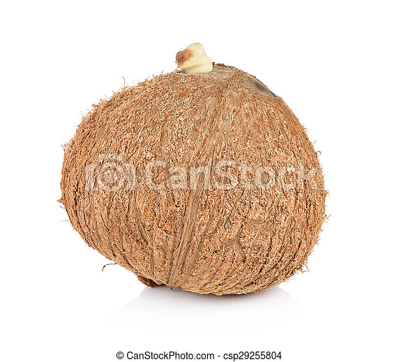 coconut closeup on a white background - csp29255804