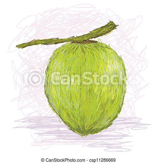 Closeup Illustration Of A Fresh Coconut Fruit