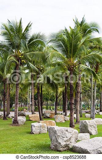 Coconut garden - csp8523688